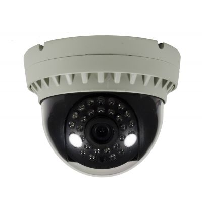 HD IP 2.1 Mp Indoor Dome Surveillance Camera